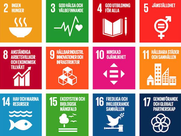 10 år kvar till 2030 - Hur når vi de Globala Hållbarhetsmålen?