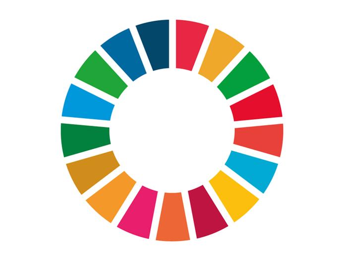 Fördjupat arbete för Globala målen - steg 3