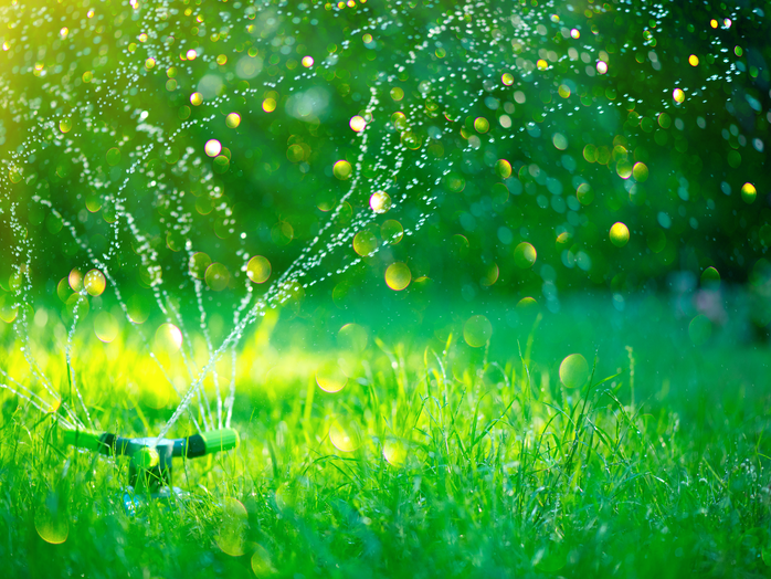 Var med och utveckla framtidens hållbara grönområden!