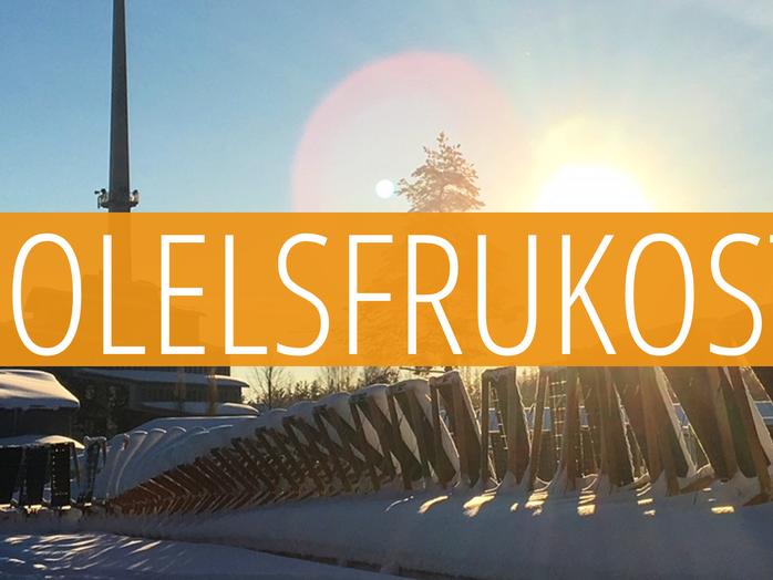 Solel i nordiskt klimat - en lönsam affär