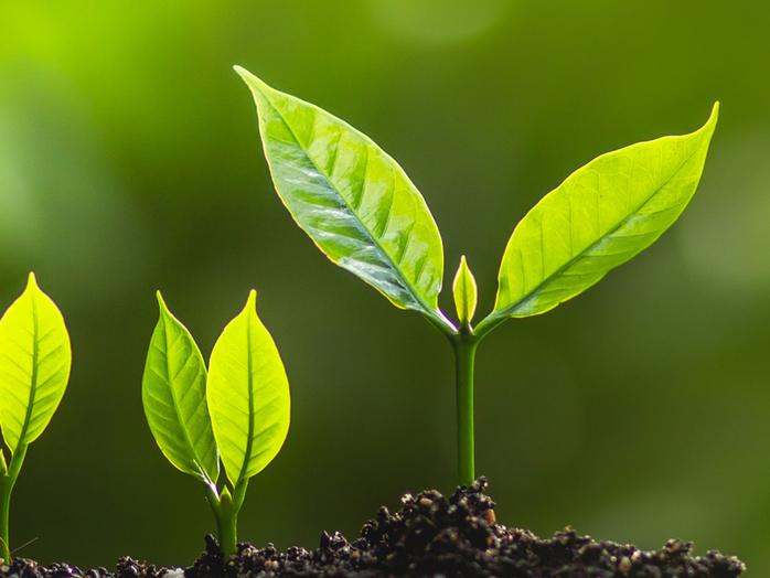 Långsiktigt hållbart (arbets)liv